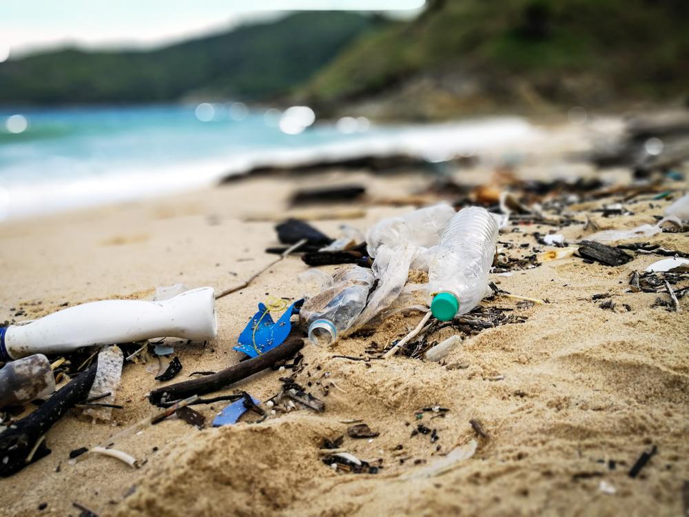 TWT Season 2 Ocean Cleanup 1