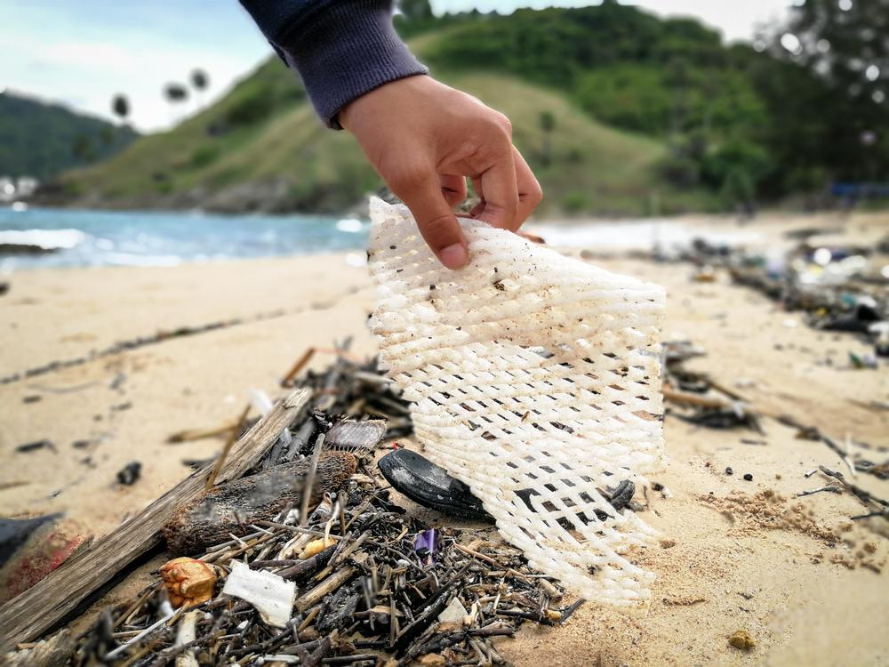 TWT Season 2 Ocean Cleanup 2