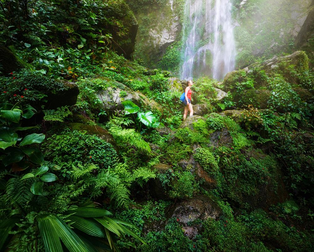 Tomorrow's World Today Ecotourism 3
