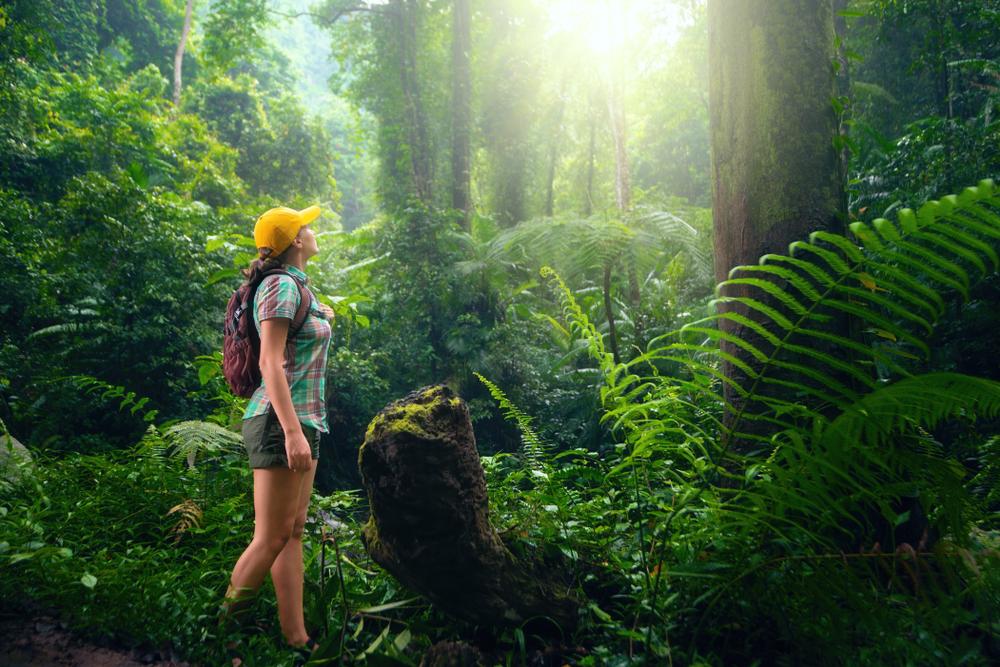 Tomorrow's World Today Ecotourism 4